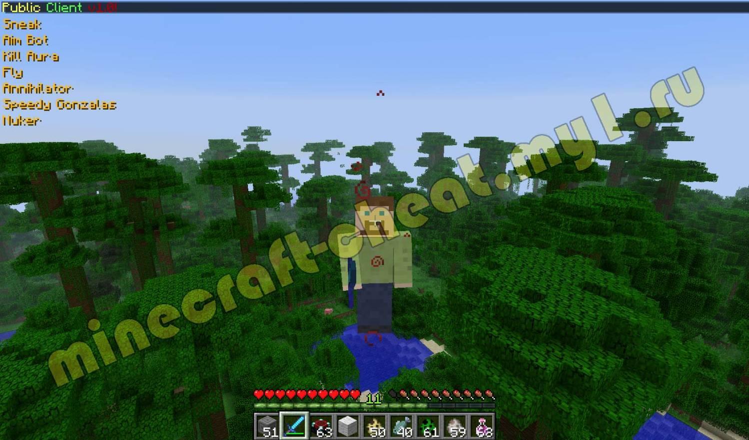 Show Health для Minecraft 1.2.3 (Скачать бесплатно и без регистрации)